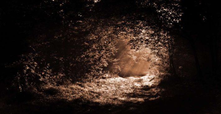dunkelretreat-erfahrungen_1200x628px